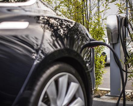 The Best Western Plus Hotel Le Rondini, near Turin and its airport, is Tesla charging partner. It offers its guests three columns for free recharging of electric cars.